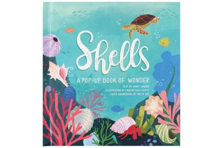Shells Pop Up Book of Wonder