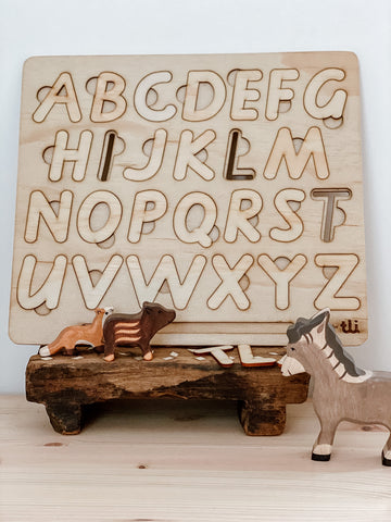 Wood Letter Puzzle and Tracing Stencil Board