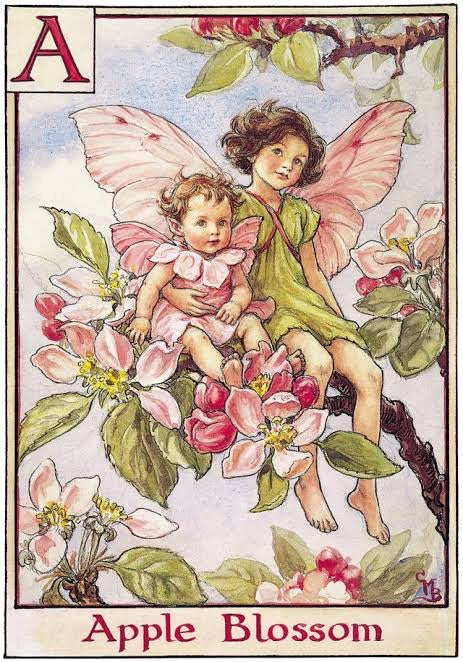 Flower Fairy Basket Tin - Apple Blossom Fairy