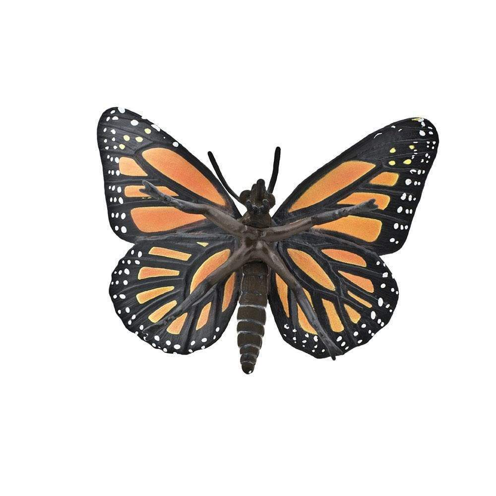Incredible Creatures - Monarch Butterfly - The Little Interior