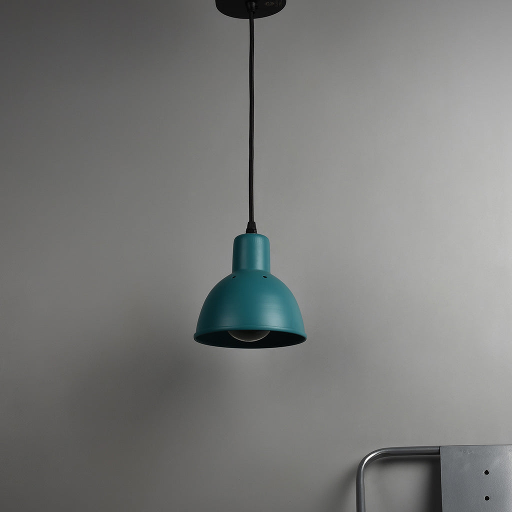 CLH149 Hawk Pendant Light