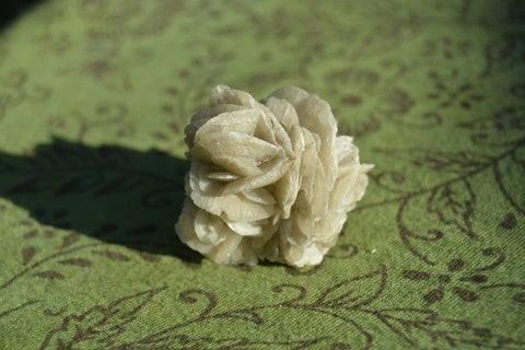 Gypsum Flower - Crystals - Gemstones - Magical Earth Bug