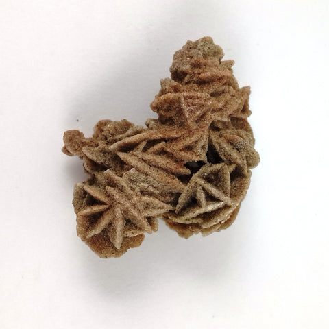 Breathtaking Desert Rose Cluster - Crystals - Gemstones - Magical Earth Bug