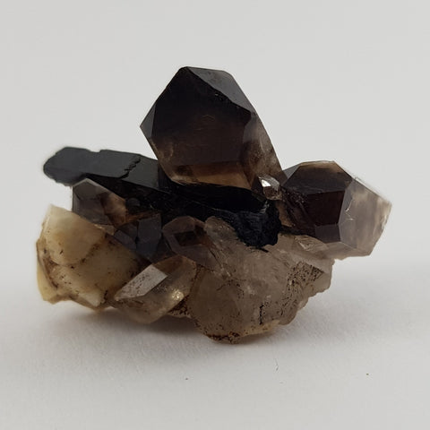 Morion Quartz Crystals - Prime Collectors Specimen