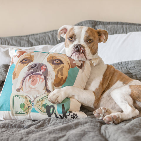 Custom Pet Canvas Cushion - Barley and Bayley