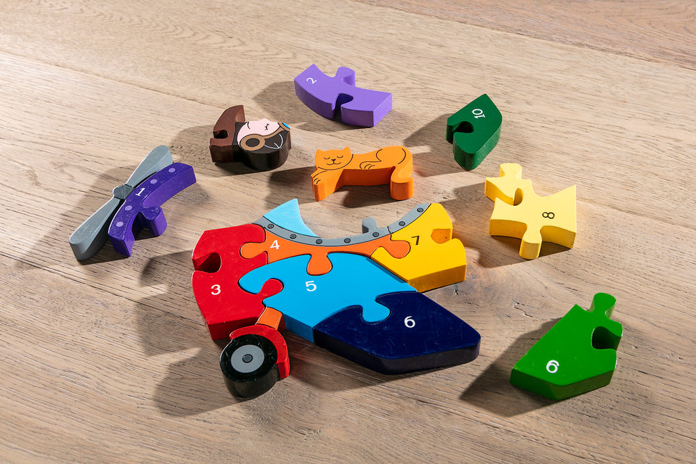 Number Plane Jigsaw Pieces