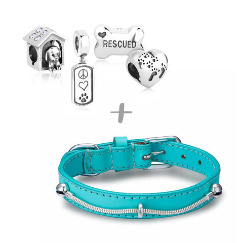 """Who Rescued Who?"" Starter Collection (Collar)"