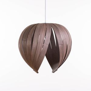 Noisette #1 / Walnut