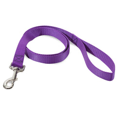 Dog Leases and Collars