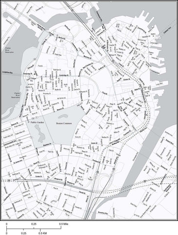 Black & White Boston, MA Map of the City Center - 4 square miles - with Local Streets