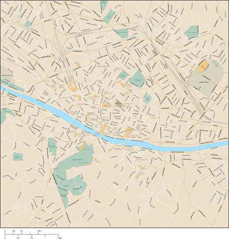 Florence Map Adobe Illustrator vector format FLC-XX-985396