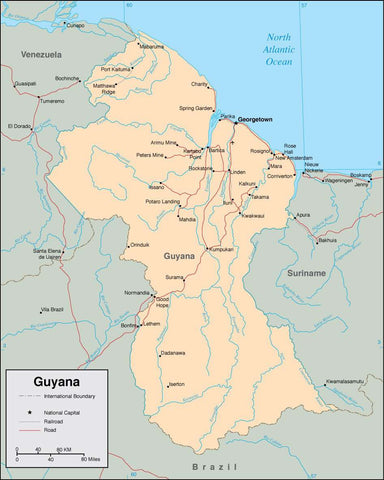 Digital Guyana map in Adobe Illustrator vector format