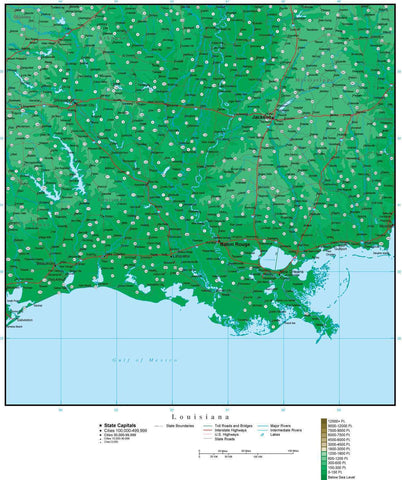 Louisiana Map with Contour Background