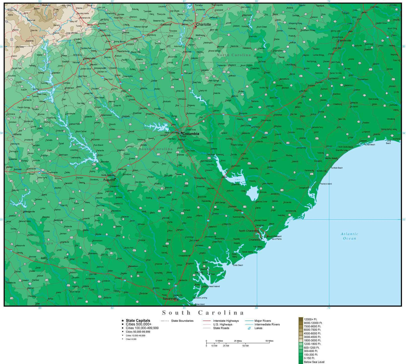 Digital South Carolina Contour Map In Adobe Illustrator Vector