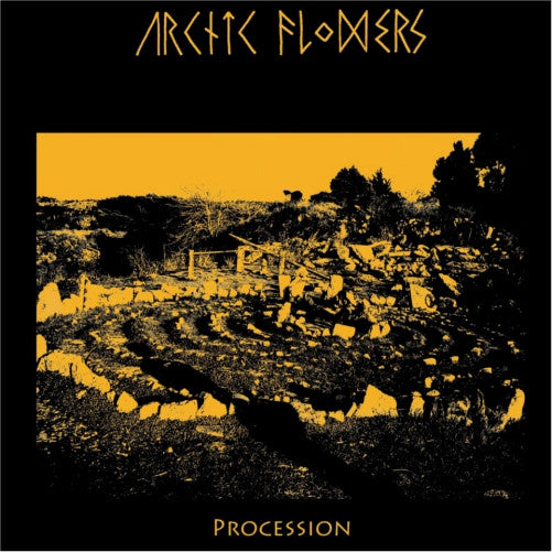Arctic Flowers- Procession LP ~EX DEFECT DEFECT! - Band - Dead Beat Records