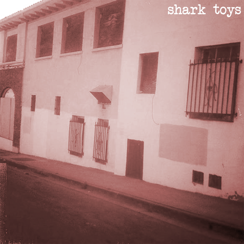 Shark Toys- S/T LP ~MODERN LOVERS!