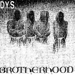 DYS- Brotherhood LP - Redrum - Dead Beat Records