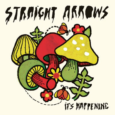 STRAIGHT ARROWS- It's Happening LP - Aarght! - Dead Beat Records