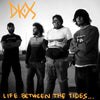 Dios- Life Between The Tides LP ~BEACH BOYS!