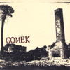 "Gomek-What the Hell Happened? 7"" ~PUNCH!"