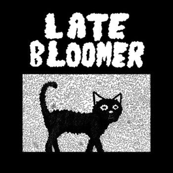 Late Bloomer- S/T LP ~EX CAR VS DRIVER! - Self Aware - Dead Beat Records