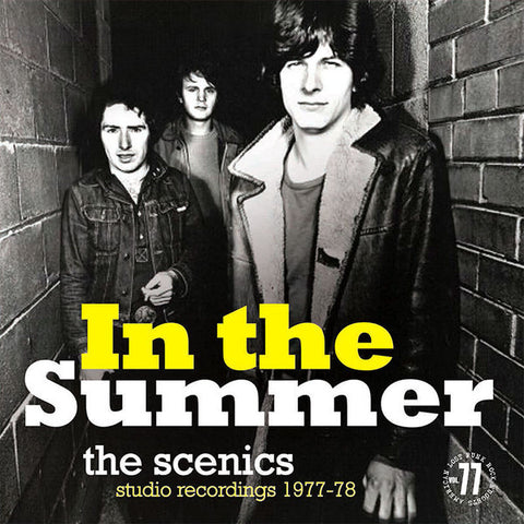 The Scenics- In The Summer (Studio Recordings 1977-1978) LP ~REISSUE! - Rave Up - Dead Beat Records