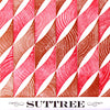 "SUTTREE- 'In Ill Repair' 7"" - Genderless - Dead Beat Records"