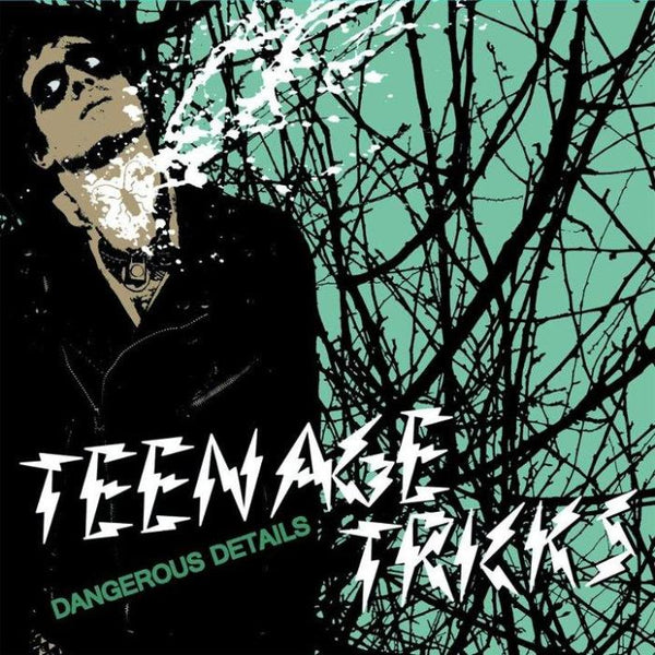 Teenage Tricks- Dangerous Details LP ~EX GAGGERS!