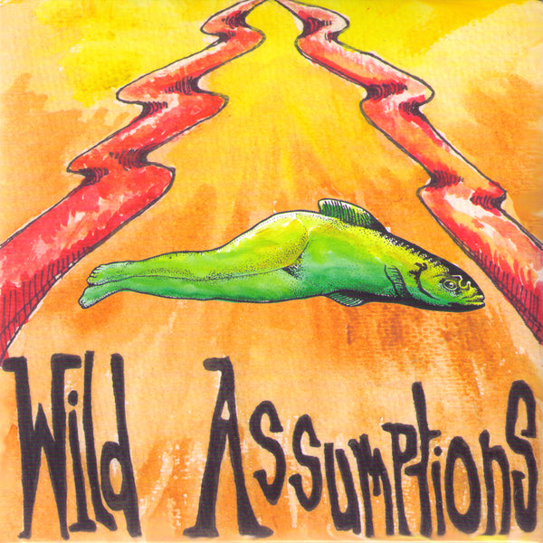 "Wild Assumptions- Run Like You 7""  ~EX STREET EATERS!"
