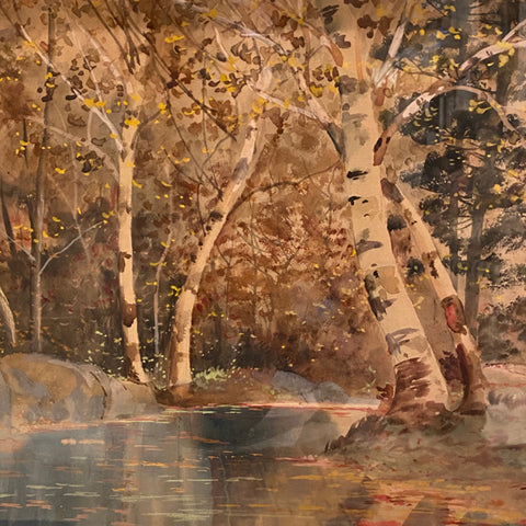 Woodland Landscape with Birch Trees