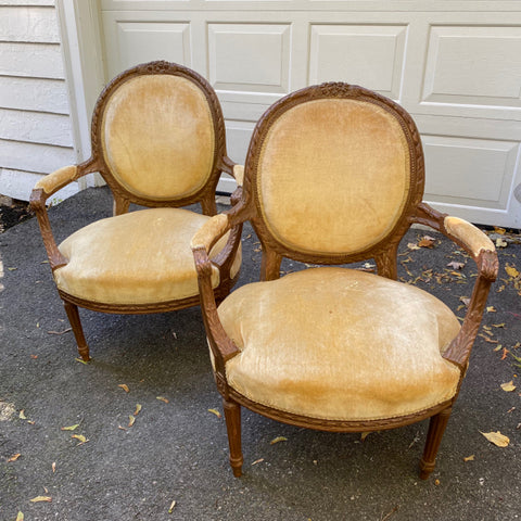 Pair of Balloon Back Fautueils with Butter Velvet Upholstery