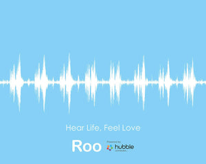 Roo Collaboration - Redeem Your Baby's Heartbeat or Voice Art