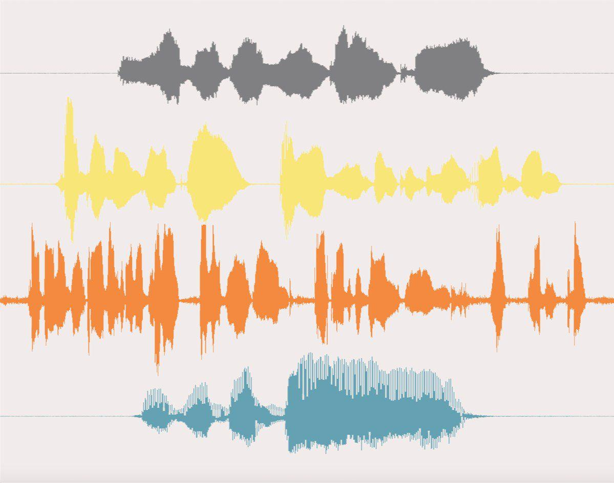 Additional Recording for Your Sound Wave Art Order - Artsy Voiceprint - 5