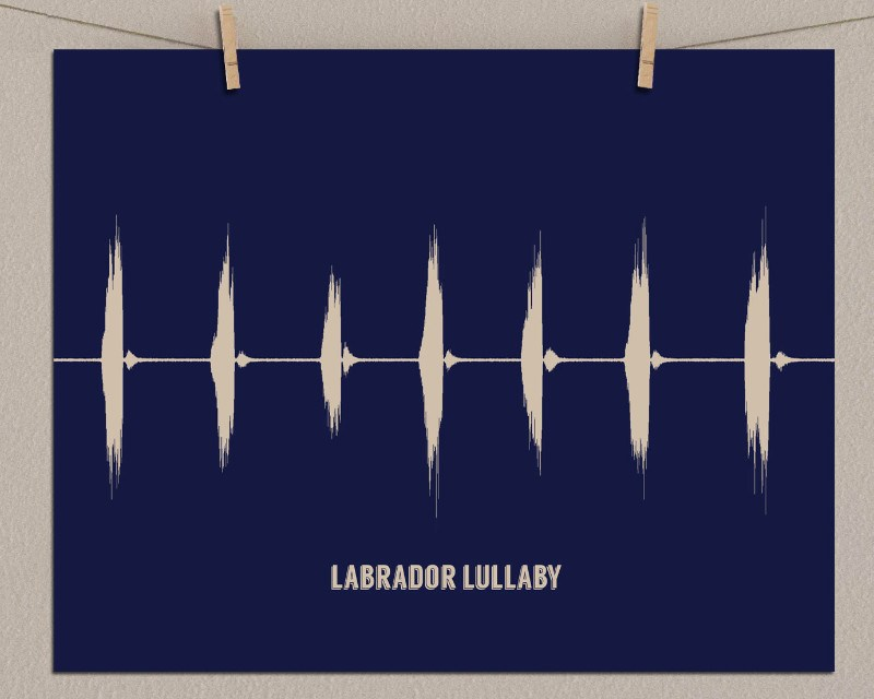 Custom Sound Wave Art for Pets - Your Dog, Cat, Bird - Gift for Pet Lover, Memorial Gifts - Artsy Voiceprint
