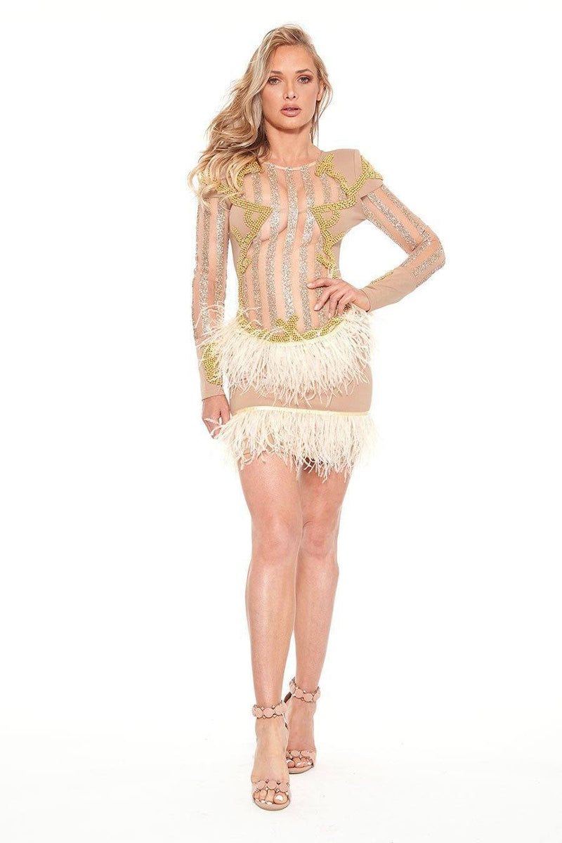 All Dresses - Jessica Bara Freja Feathered Long Sleeve Dress