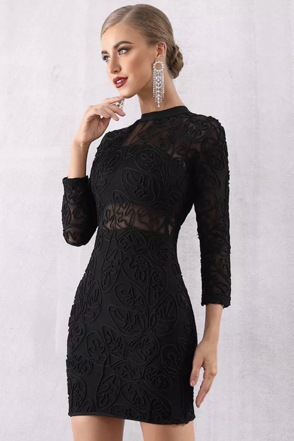 Jessica Bara Heather Long Sleeve Lace Bodycon Mini Dress
