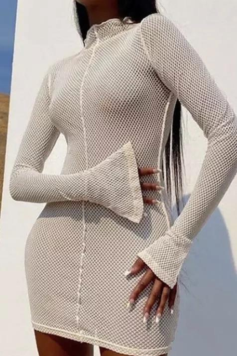 Jessica Bara Kari Long Sleeve Mesh Mini Dress