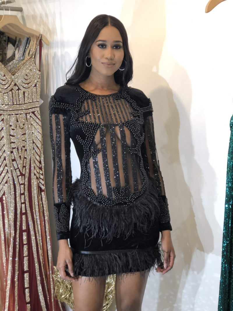 Jessica Bara Freja Feathered Long Sleeve Dress