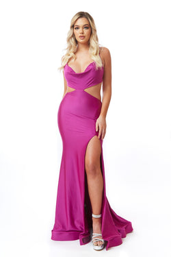 Atria Cowl Neck Cut Out Gown