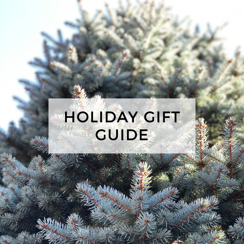 Holiday Gift Guide (& last order date)