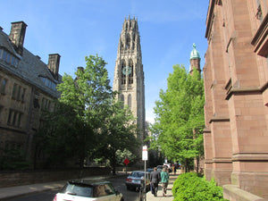 Top 10 Things To Do in New Haven