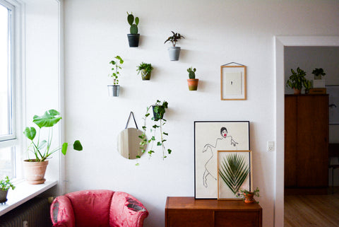 Wall Planters help add plants to your home without taking up space on counters and window shelfs.