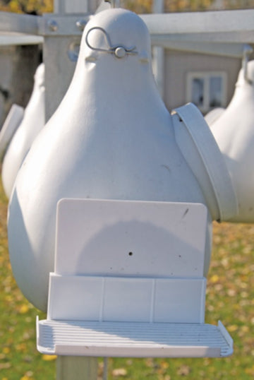 Ravenox Door Shields for Purple Martin Gourds