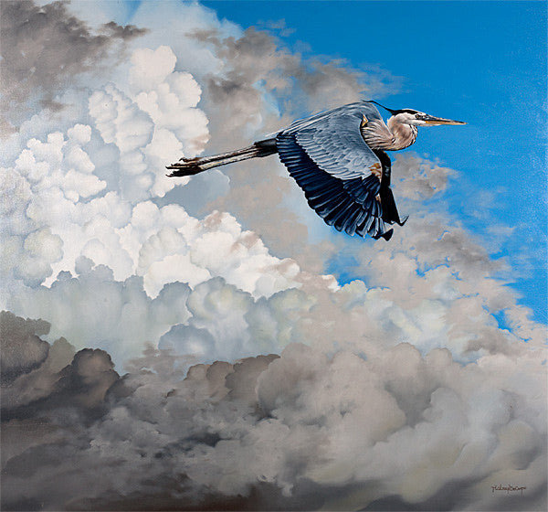 "Blue Heron in Flight - Oil on canvas 48""x48"""