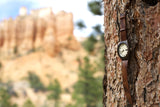 Wooden Watch | The Pine Mens Wood Watch