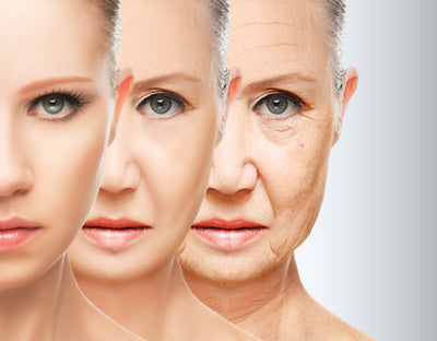 Slow Down the Clock on Aging Skin