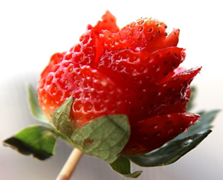 strawberry-rose