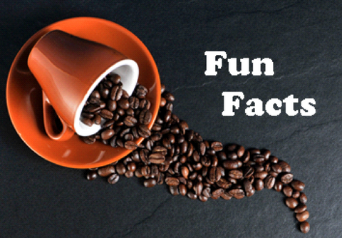 coffee-fun-facts