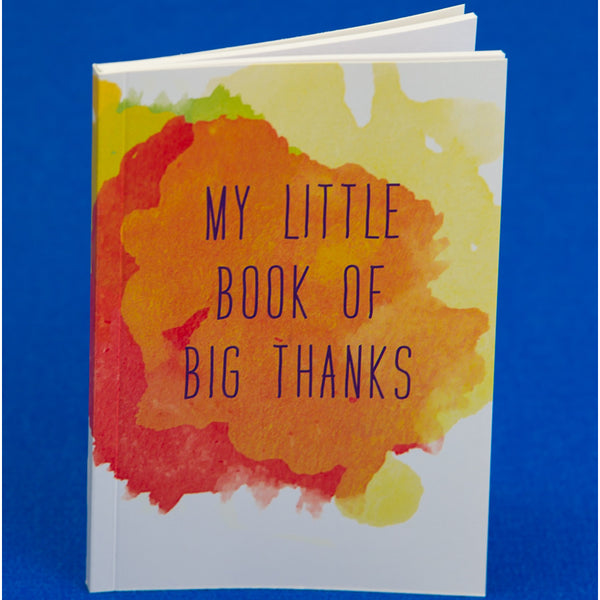 my little book of big thanks