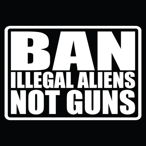 Ban Illegal Aliens Not Guns - 1